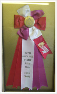 image of  World Champion Medal for grass seed